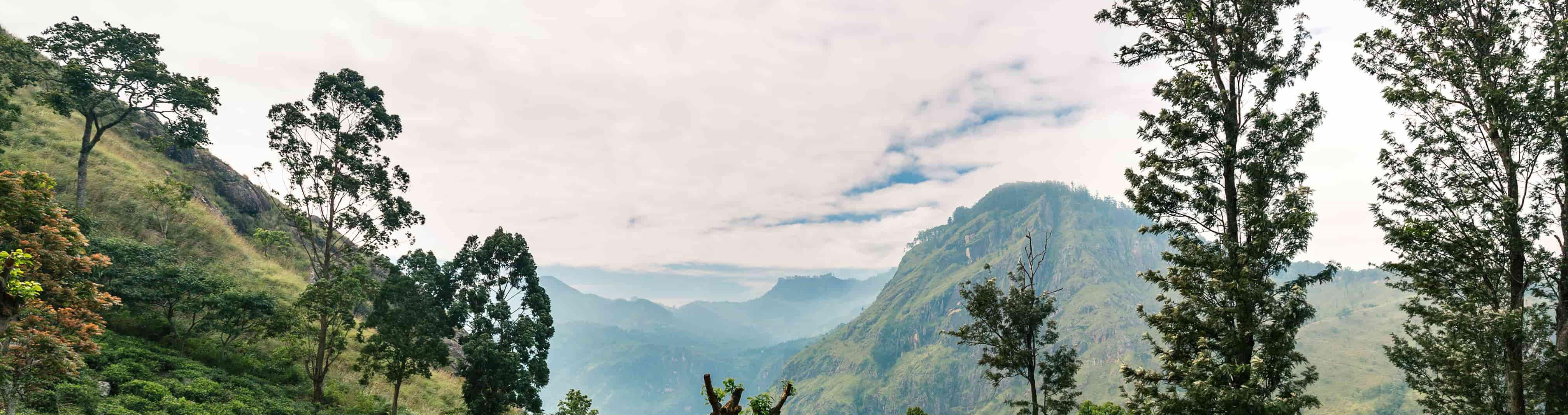 Зимовий відпочинок на Шрі-Ланці: SkyUp відкриває продаж квитків на південь острова